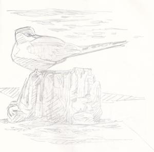 Kalatiira lepää Purolahdella