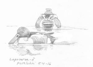 Lapasorsakoiras Purolahdella, 5.4.2016