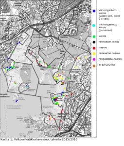 Kartta 1. Valkoselkätikkahavainnot(4)